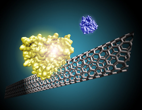 Nanotube sensor | by Oregon State University