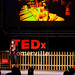 TED-talks-Somerville-2012-0793