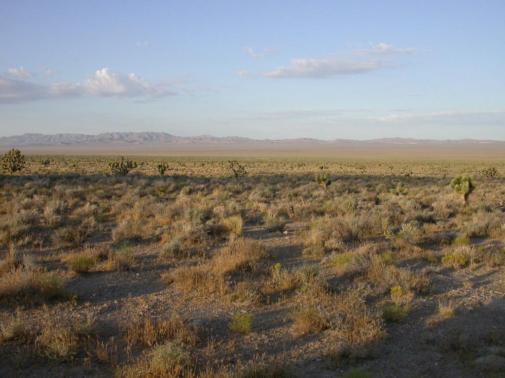 Desert Nevada Desert The Scenery Around Our Overnight Stop