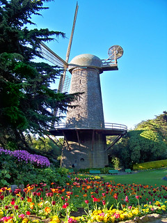 Golden Gate Park Windmill with tulips | by Trace Nietert