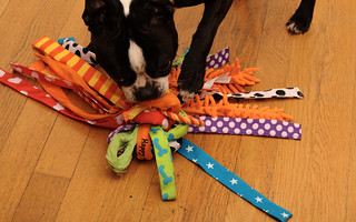 "Lola kills indestructable toys | by Kristin ""Shoe"" Shoemaker"