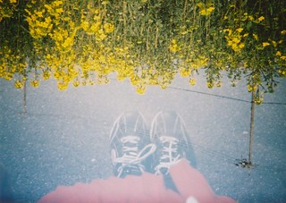 HOLGA135 Multiple exposure | by anna_gst