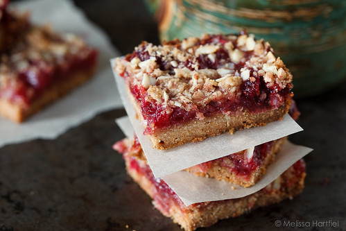 Cranberry Crumble Bars | by mhchipmunk