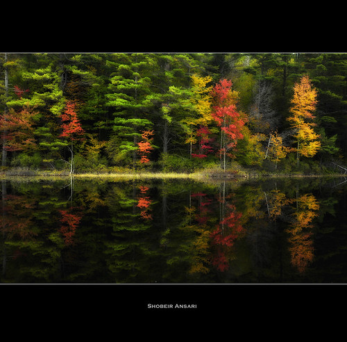 Autumn in Adirondacks | by Shobeir