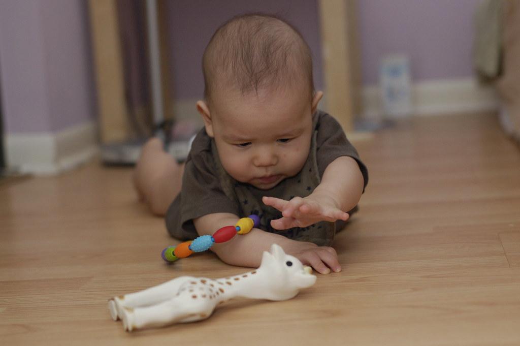 赤ちゃん写真 コンテスト 7