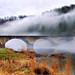 Cumberland Falls Bridge Fog