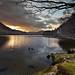 Morning Light On Ullswater