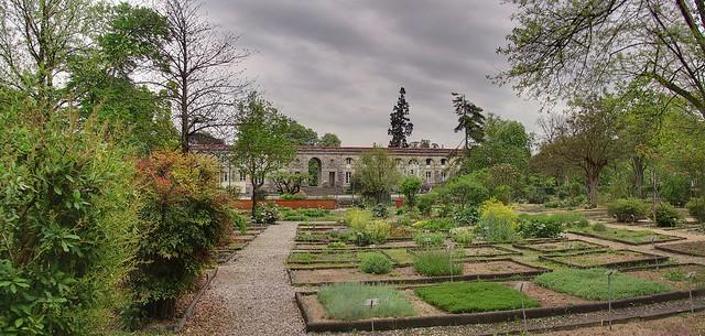 Jardin botanique de bordeaux flickr photo sharing for Jardin botanique bordeaux