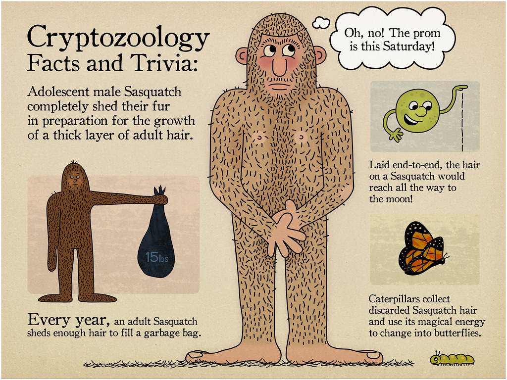 Cryptozoology Facts And Trivia 1