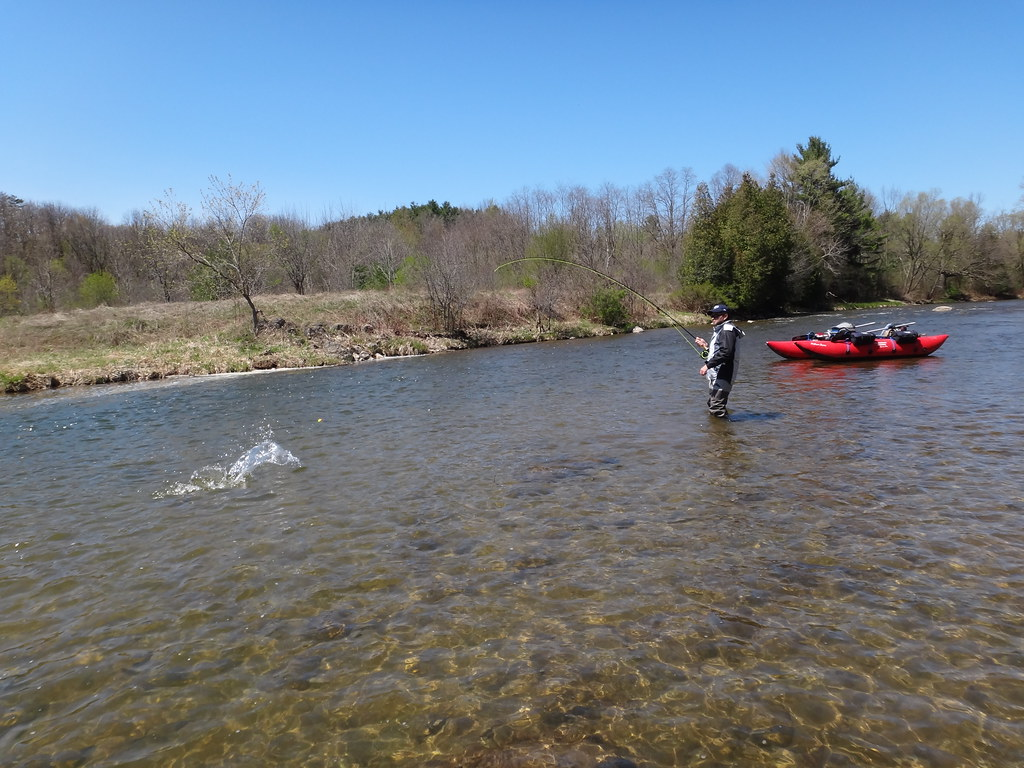 Fly Fishing For Ontario Steelhead