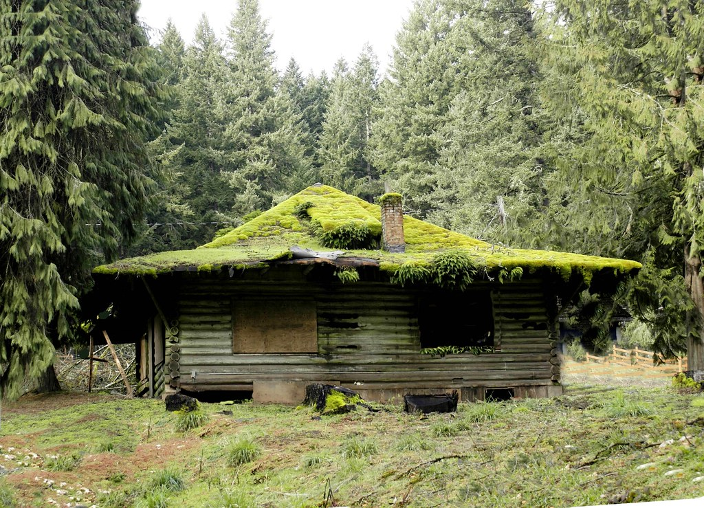 Mountain cabin once a family getaway this mossy roofed for Cabin in the woods oregon