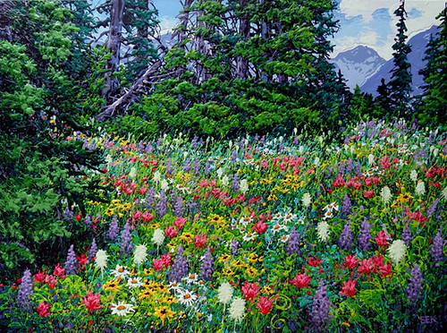 Kootenay Meadow