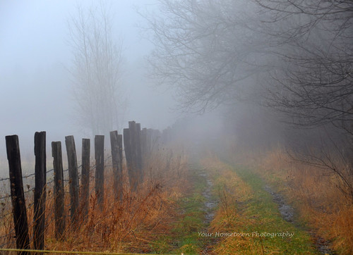 Early morning fog | by gerrybuckel