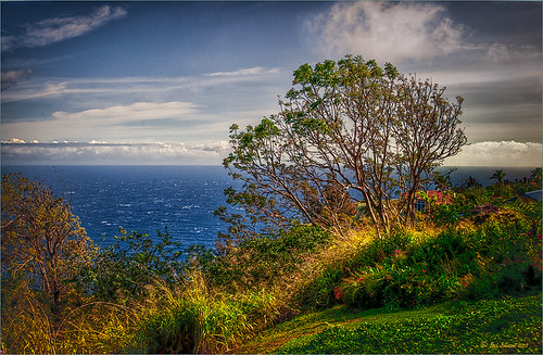 Image of View on Big Island, Hawaii