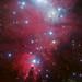 NGC 2264 and the Christmas Tree cluster