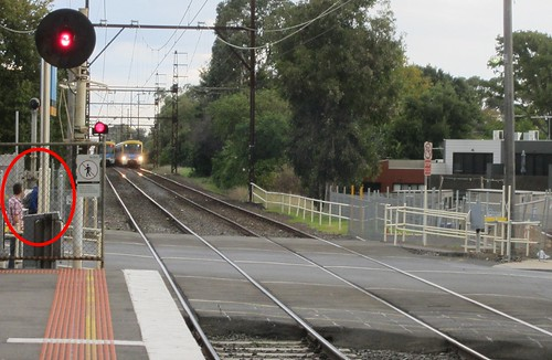 Cyclist risks death riding out in front of train (1/2) | by Daniel Bowen