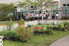 School Garden Visits Es A Set On Flickr