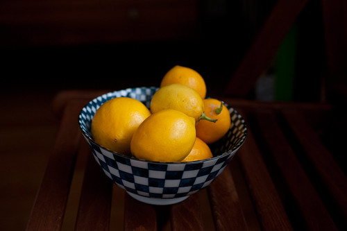 the humble beginnings of the preserved meyer lemons | by sassyradish