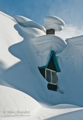 Loads of Snow at Roger's Pass | by Marc Shandro