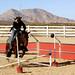 Cavalry certification