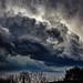 Deadly Storm in Kentucky, Weather in Kentucky 2012