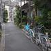 植木と自転車の路地