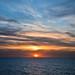 The Dramatic Death of Golden Lucky Bird - Sunset   [Explored]