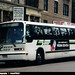 (Green Bus Lines) 1993 TMC RTS-06 #147