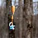 Bozen Kill Falls - Duanesburg, NY - 2012, Jan - 11.jpg