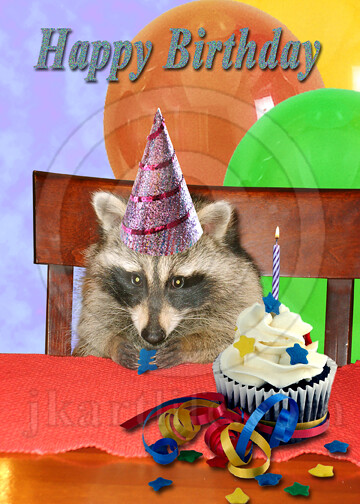 Fine Raccoon Birthday 899672 To Purchase Or See A Wider Funny Birthday Cards Online Aboleapandamsfinfo