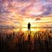 i and sunset