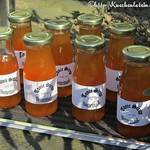 Tonic-Sirup nach Jeffrey Morgenthaler