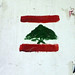 Lebanese Flag Graffiti