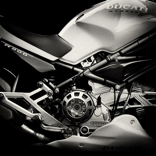 Ducati Monster | by Darran Buckley