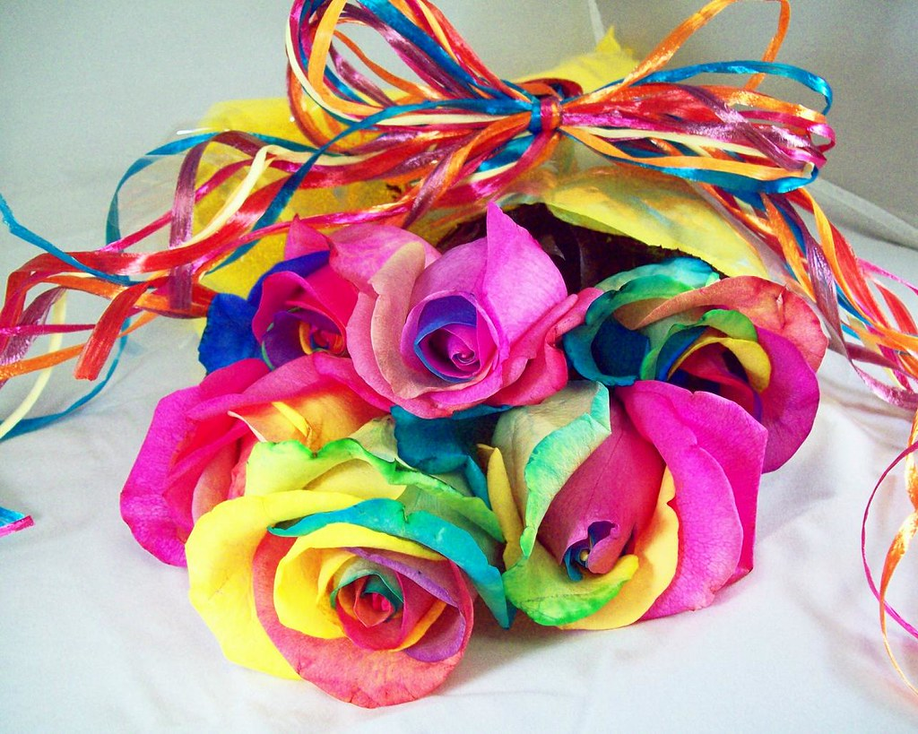 Rainbow roses for valentine 39 s day nicholas got me a for How to color roses rainbow