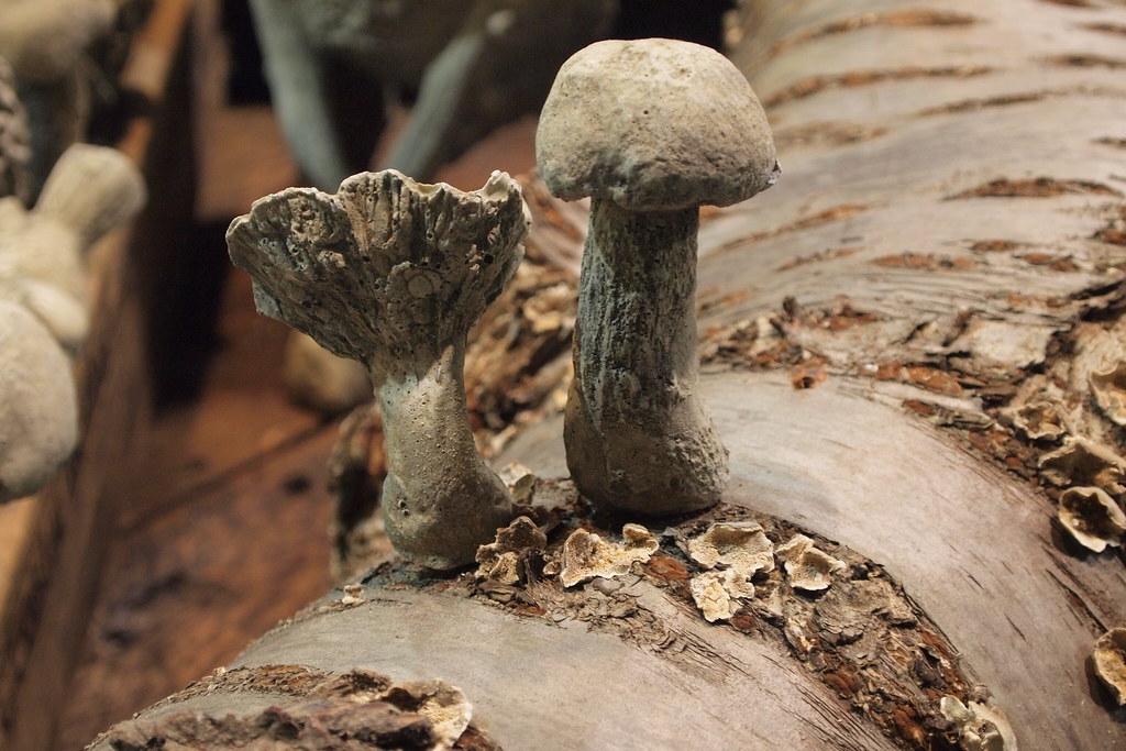 Cermaic Mushroom  Canister Kitchen Set