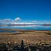 Whalefjord Iceland