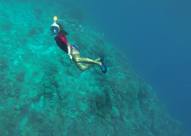 Haciendo snorkel bajo el océano índico en Maldivas junto a nuestra isla desierta de Odagalla
