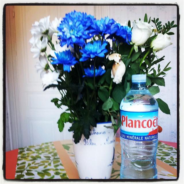 Le langage des fleurs flickr photo sharing for Langage des fleurs