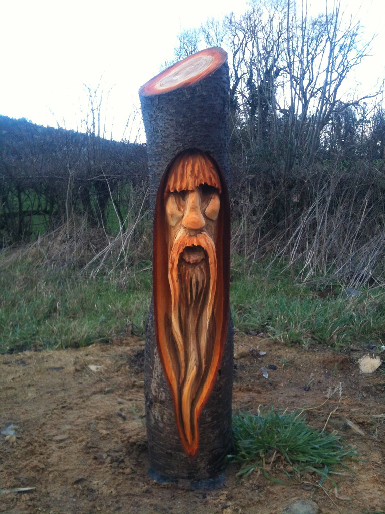Tree wizard chainsaw carving rob beckinsale flickr