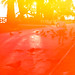 Instamatic Reflex Santa Monica5