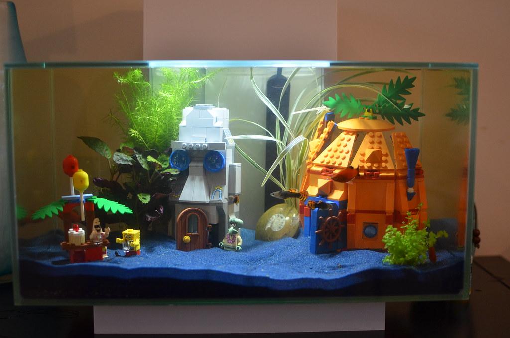 Decoration Aquarium Axolotl : Fluval edge aquarium with spongebob lego my new