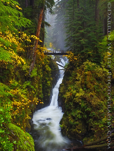 Sol Duc Falls | by Darren White Photography