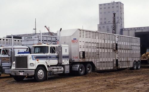 Big Dog Trucking
