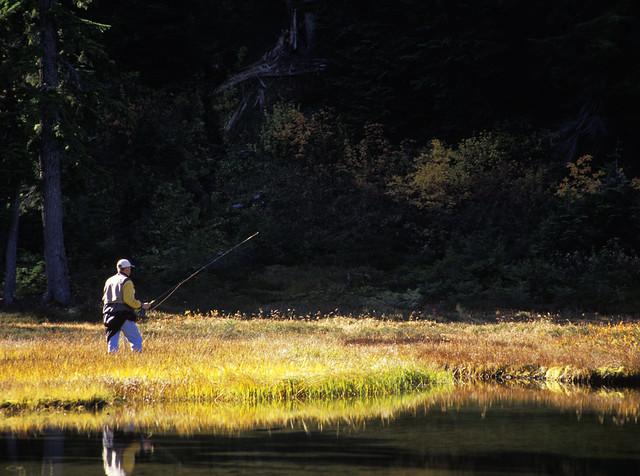 Sf17 man fly fishing subalpine lake grace lakes for Take me fishing lake locator