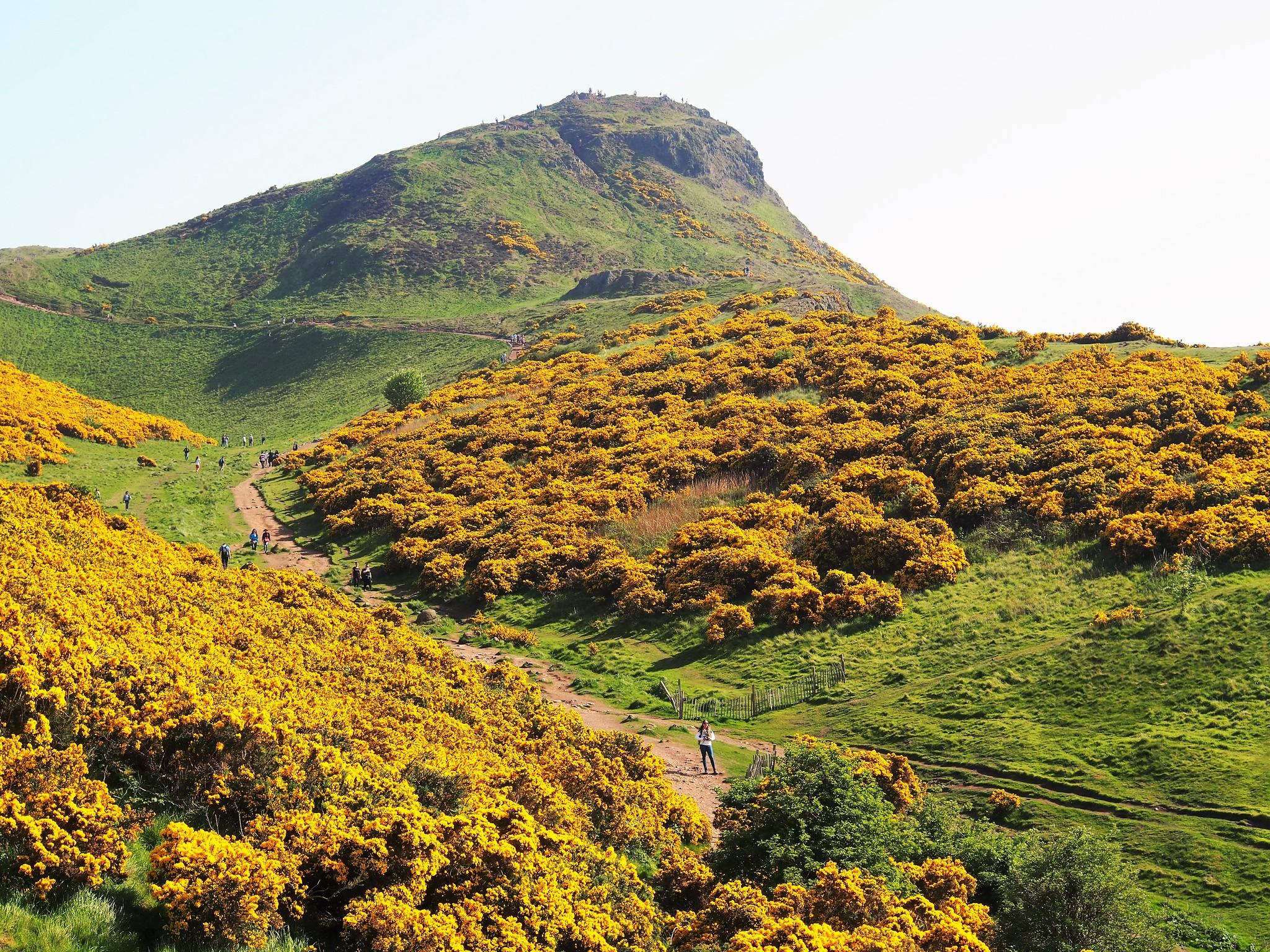 Trail to Arthur's Seat, Holyrood Park, Edinburgh, Scotland.