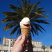 if ice cream cones grew on palm trees