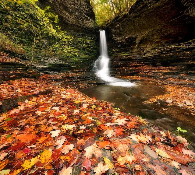 Excelsior Glen Falls, Finger Lakes.