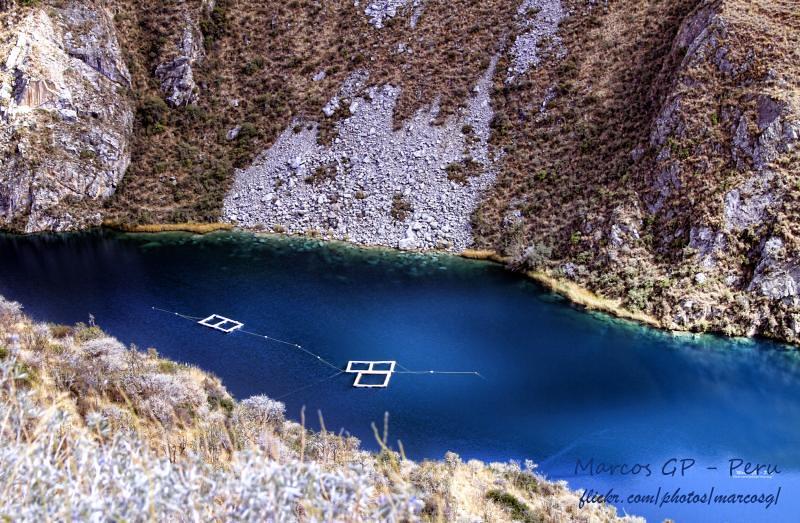 Criadero de truchas en la laguna la laguna de huallhua for Crianza de truchas en lagunas