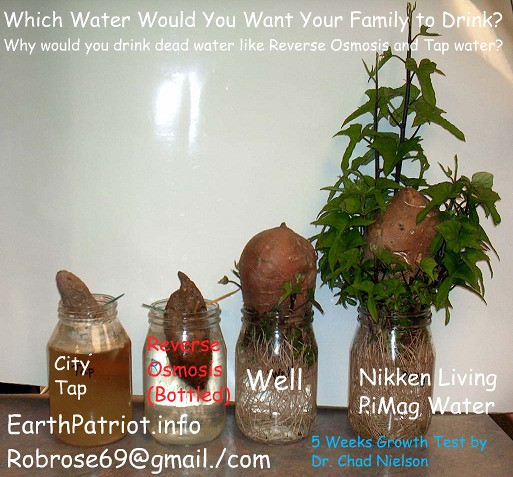 Nikken Pi Mag Waterfall Water System Look At The Sweet